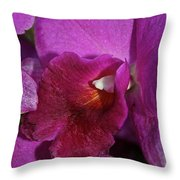 Lush Lavender Throw Pillow