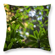 Lush Rhododendron Forest Throw Pillow