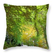 Luss Waters Throw Pillow