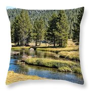 Lyell Canyon Throw Pillow