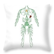 Lymphatic System, Illustration Throw Pillow