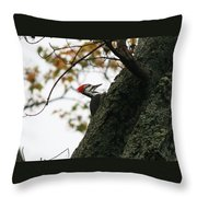 Lyndonville Pileated Woodpecker Throw Pillow