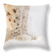 Lynx Feet Throw Pillow