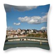 Lyon View Throw Pillow
