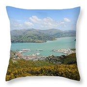 Lyttelton Harbor Throw Pillow