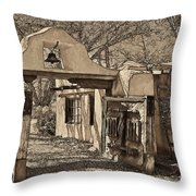 Mabel's Gate - A Different View Throw Pillow