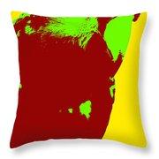 Macaw Pop Art Throw Pillow