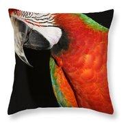 Macaw Profile Throw Pillow