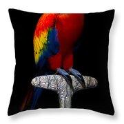 Macaw... Throw Pillow