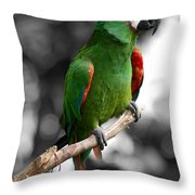 Macaw With Black And White Background Throw Pillow