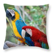 Macaws Of Color23 Throw Pillow