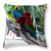 Macaws Of Color24 Throw Pillow