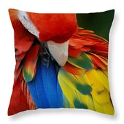 Macaws Of Color25 Throw Pillow