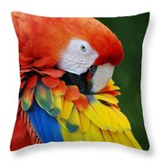 Macaws Of Color28 Throw Pillow