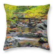 Macedonia Brook Square Throw Pillow