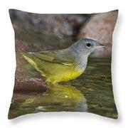 Macgillivrays Warbler Throw Pillow