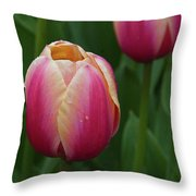 Mackinac Tulip 10386 Throw Pillow