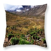 Mackinder's Valley Throw Pillow