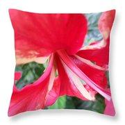 Macro Beauty Throw Pillow