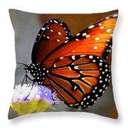 Macro Butterfly Throw Pillow