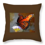 Macro Butterfly Throw Pillow