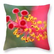 Macro Close Up Of Hibiscus Pollen  Throw Pillow