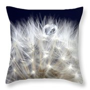 Macro Dandelion Throw Pillow