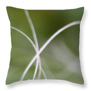 Macro Of A Green Palm Tree Leaf  Throw Pillow
