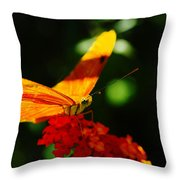 Macro Of An Orange Butterfly Throw Pillow