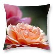 Macro Orange And Pink Floribunda Rose Throw Pillow