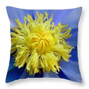Macro Photograph Of  Blue Waterlily Throw Pillow
