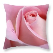 Macro Pink Rose Flower Raindrop Throw Pillow