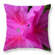 Macro Purple Azalea Flower Throw Pillow