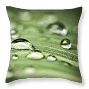Macro Raindrops On Green Leaf Throw Pillow