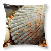 Macro Shell On Sand 4 Throw Pillow by Riad Belhimer
