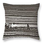 Madagascan Paddyfield Throw Pillow