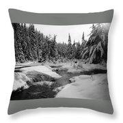 Madawaska River Throw Pillow