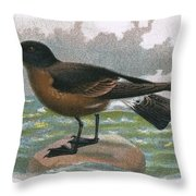 Madeira Petrel Throw Pillow