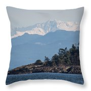 Madrona In December Throw Pillow
