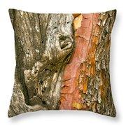 Madrone Tree Bark Throw Pillow