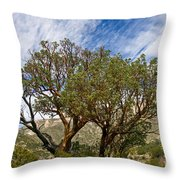 Madrone Trees Throw Pillow