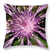 Magenta Fireworks Throw Pillow