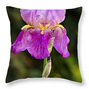 Magenta Iris Crop Throw Pillow