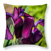Magenta Iris Throw Pillow