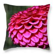 Magenta's Orb Throw Pillow