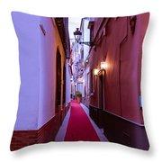 Magic Carpet Ride Throw Pillow