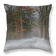 Magic In The Fog 3 Throw Pillow by Beth Sawickie
