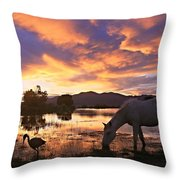 Magic Of Summer  Throw Pillow
