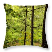 Magic Of The Golden Forest Throw Pillow