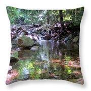 Magic Pool Throw Pillow